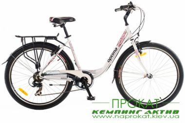 City bicycle rental 3