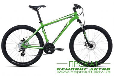Rental bicycle bike 2